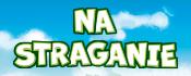 button_175x70_na_straganie