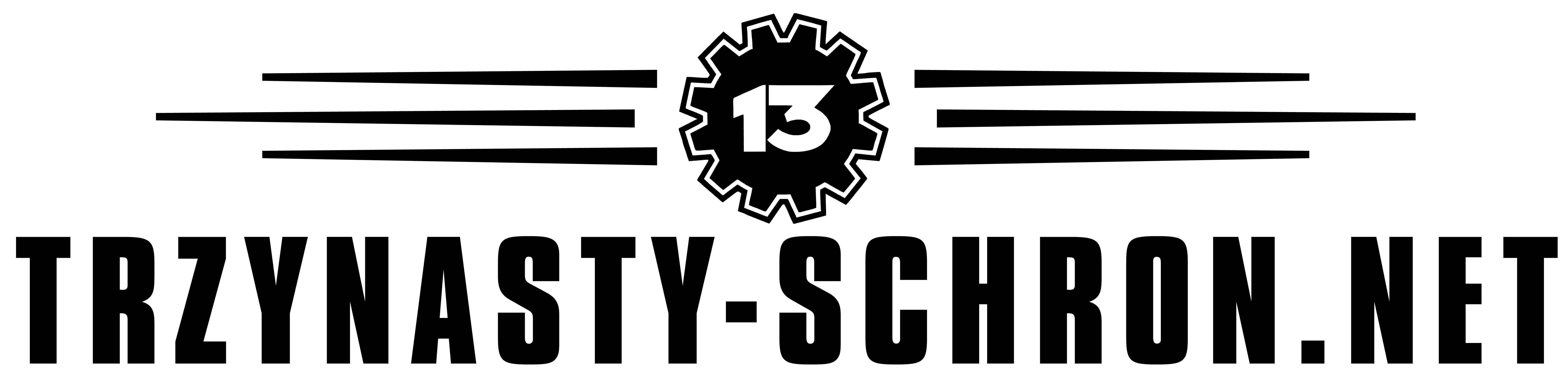 13S_logo